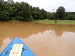 Flood Range