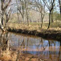 Noketchee Creek