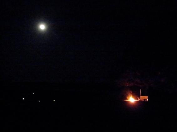 NightSignals